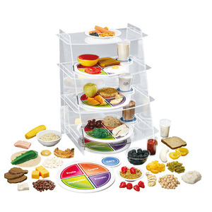 [3B] 마이플레이트 교육용키트 W44791K /MyPlate Kit,DisplayRack and Food Kit